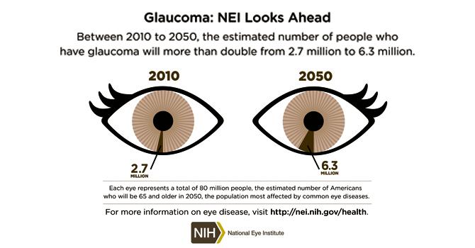 Glaucoma diagram2010 2050