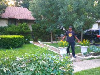 Sankofa Home Gardens