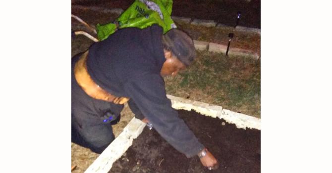 Sankofa Garden Homes   Moonlight Planting