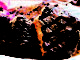 Grilled Steak   by Errico Studio.FamilyFeatures