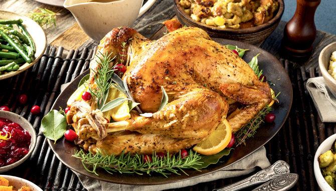 14450 A UF holiday turkey